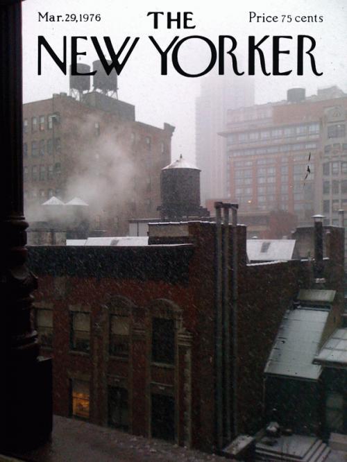 finn-newyorker.jpg